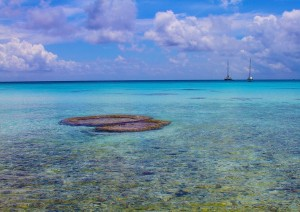 Photo of the Day: Rangiroa Atoll in French Polynesia