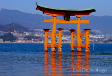 Torii Gate at Itsukushima Shrine in Miyajima, Japan