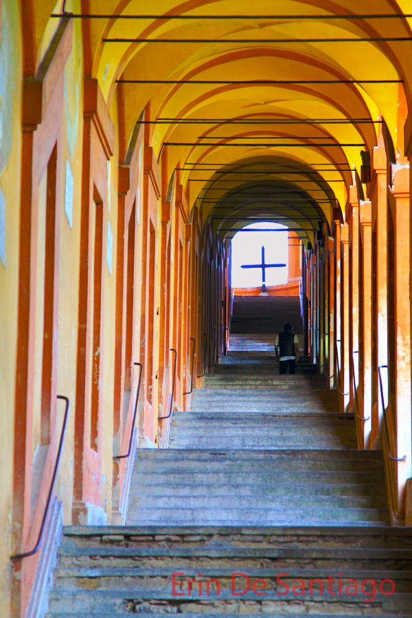 A glimpse into the 666 porticos at San Luca in Bologna, Italy A glimpse into the 666 porticos at San Luca in Bologna, Italy