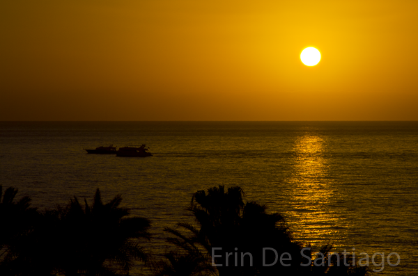 Dive boats at sunrise on the Red Sea in Egypt