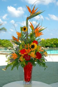 Photo of the Day: Flowers from the Cayman Islands