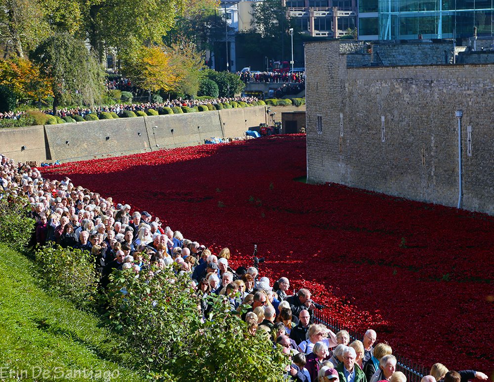 A small portion of the crowds at the Tower of London to see the poppies.