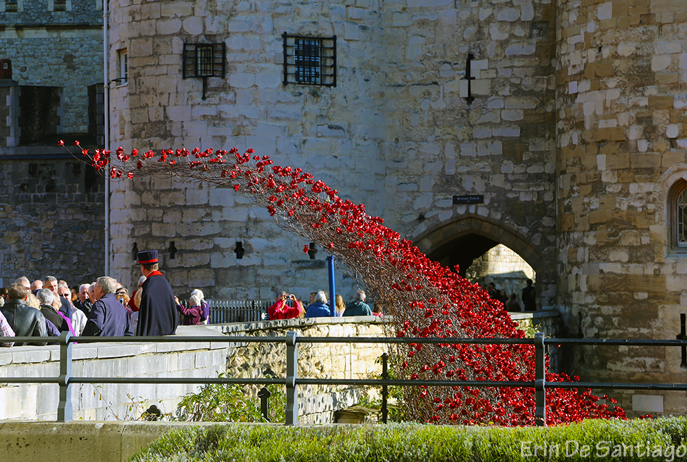 "Side view of the poppies with a ""Beefeater,"" or Yeoman Warders, ceremonial guards of the London Tower."