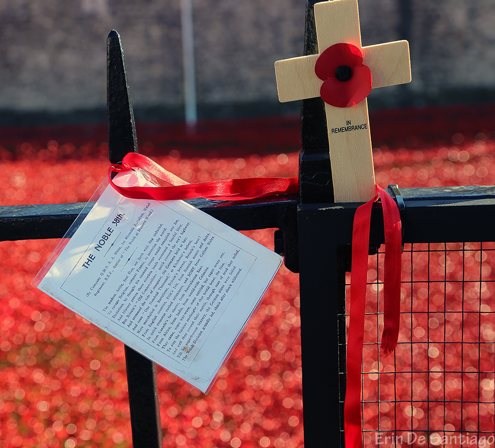 Remembrance crosses, personal messages, poems, and more adorned the fences around the Tower of London.